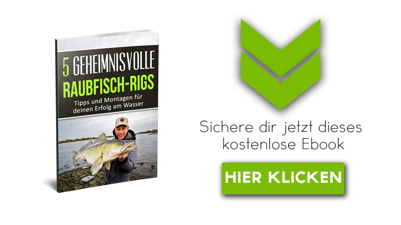 Raubfisch Ebook