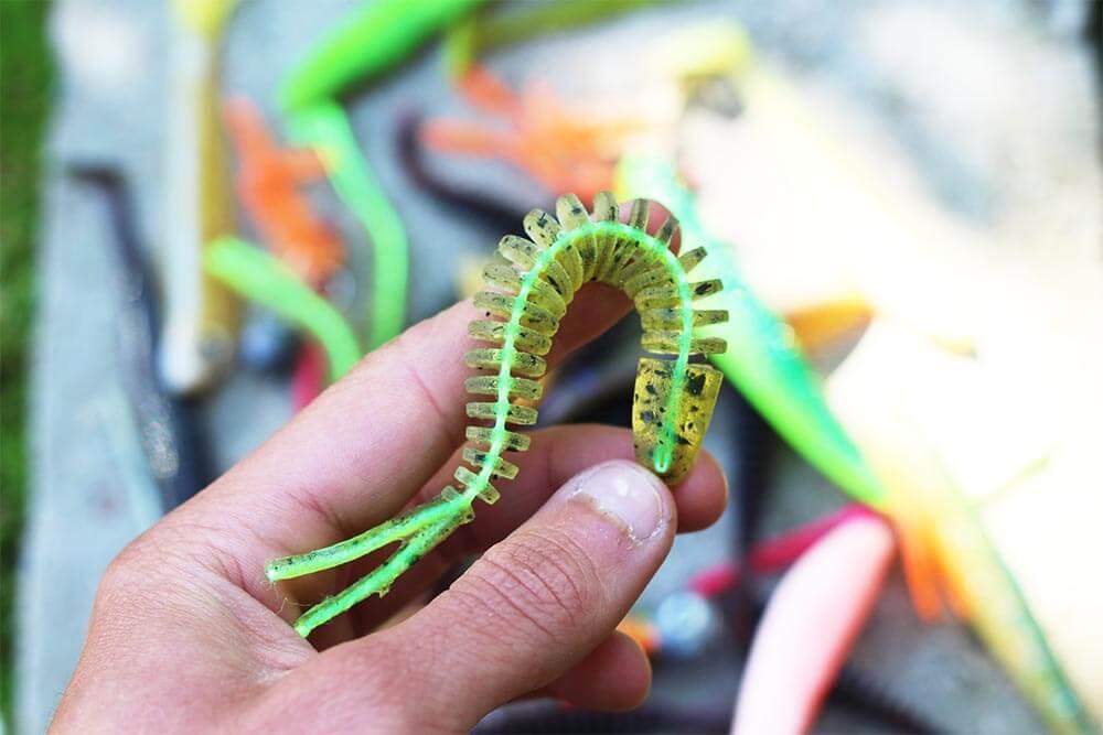 Gummifisch Zander