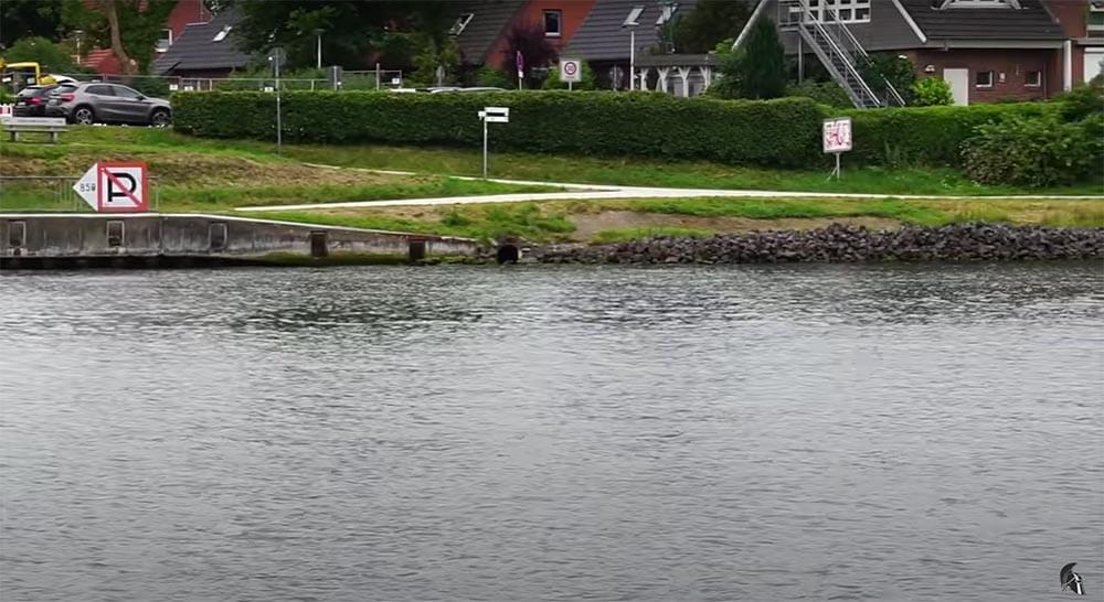 Spundwand Steinpackung Zanderangeln am Kanal