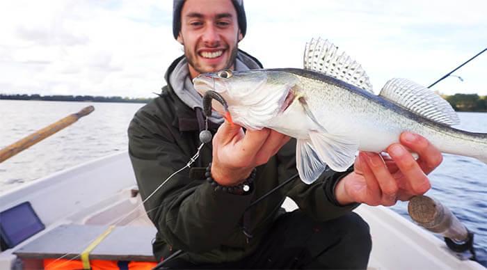 Fisch Landen Zander